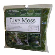 Live Mosses Are For The Gardener Who Wants An Instant Moss Garden. The  Mosses Are Dried And Dormant And Will Rehydrate And Start Growing As Soon  As They Are